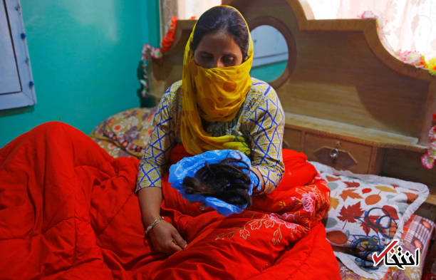 بحران در کشمیر؛ گیس زنان در خواب بریده میشود!9
