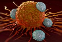 Iran Develops Smart Nanomedicine for Curing Cancer Cells