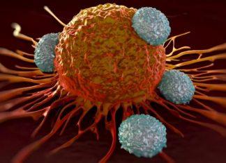 تولید نوعی نانوداروی هوشمند برای درمان سلولهای سرطانی