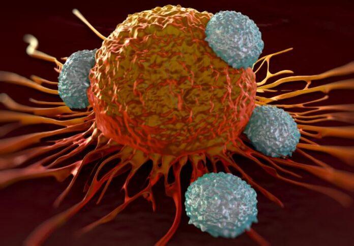 Iran Develops Smart Nanomedicine for Curing Cancer Cells