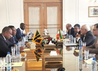 Iranian, Tanzanian FMs Hold Talks in Tehran