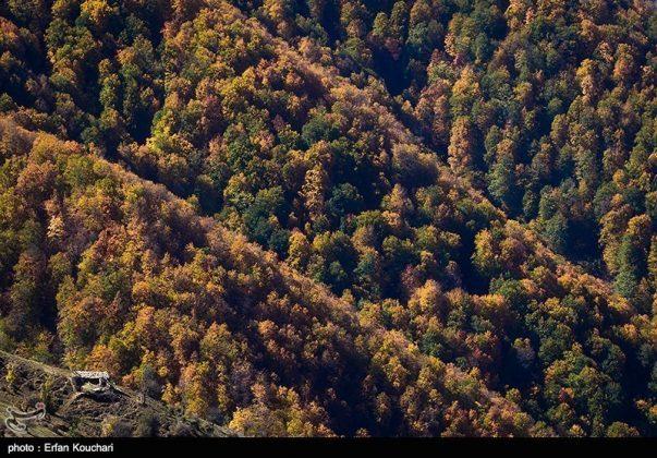 طبیعت ارتفاعات مازیچال استان مازندران مازیچال٬ نام دهکدهای زیبا در نزدیکی کلاردشت 12