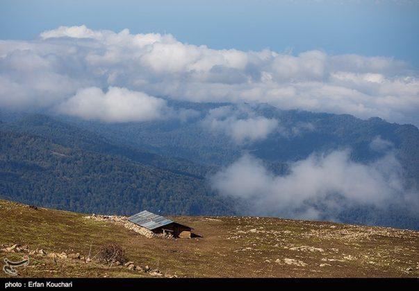 طبیعت ارتفاعات مازیچال استان مازندران مازیچال٬ نام دهکدهای زیبا در نزدیکی کلاردشت 14