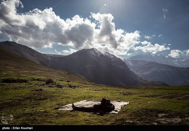 طبیعت ارتفاعات مازیچال استان مازندران مازیچال٬ نام دهکدهای زیبا در نزدیکی کلاردشت 8