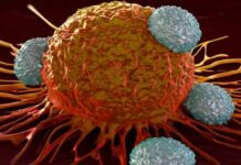 Iranian Scientists Find New Treatment for NB Cancer