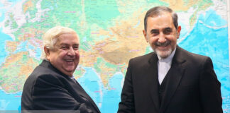 Cooperation with Iran Helps Syria Survive Foreign Plots: Velayati