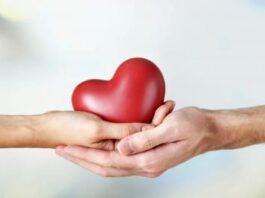 Brain-Dead Woman's Organs Save Five Lives