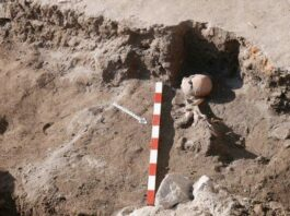 Remains of Medieval Warrior with Arrow in Chest Found in Bulgaria