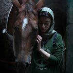 فیلم (الترویض) الايراني یشارك في مهرجان برلین الدولي
