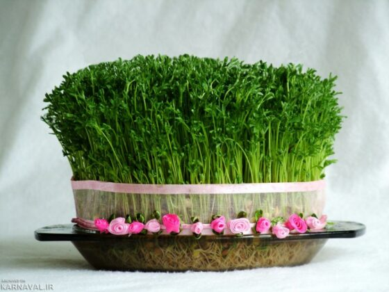 Sprouts for Iranian Haft-Seen