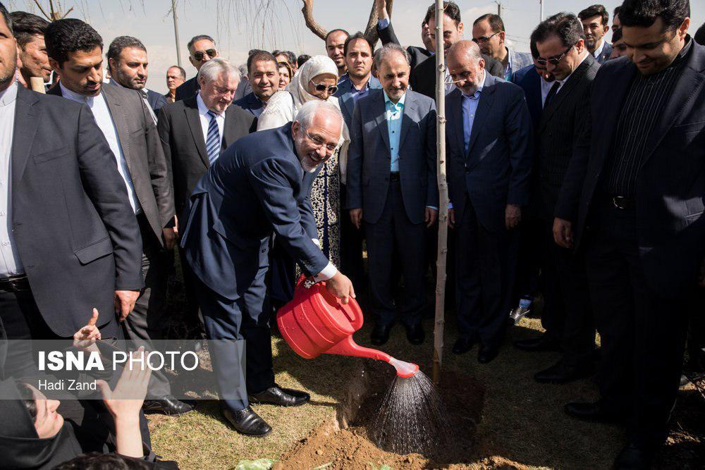 Tackling Environmental Issues Needs Global Cooperation: Zarif on