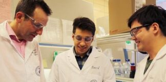 Iranian Researcher Develops Gadget to Print Skin on Wounds