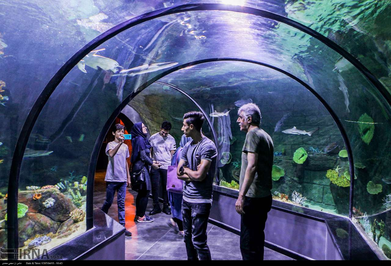 http://ifpnews.com/wp-content/uploads/2018/07/aquarium-anzali-17.jpg
