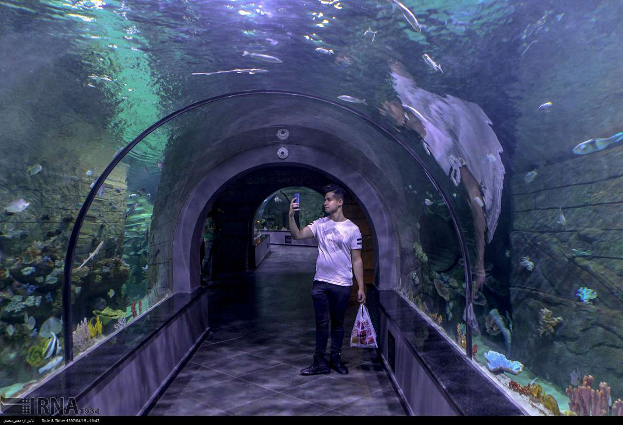 http://ifpnews.com/wp-content/uploads/2018/07/aquarium-anzali-22.jpg