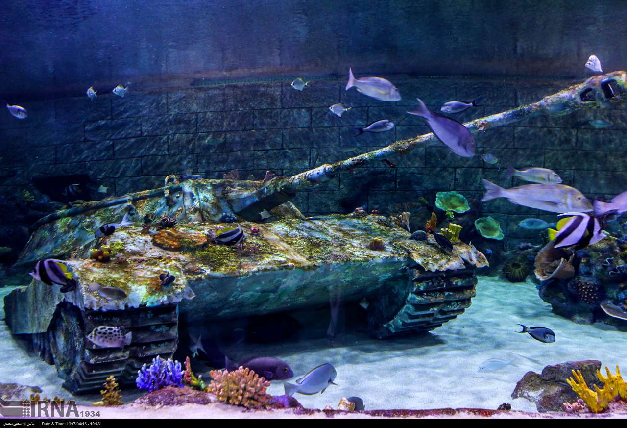 http://ifpnews.com/wp-content/uploads/2018/07/aquarium-anzali-23.jpg
