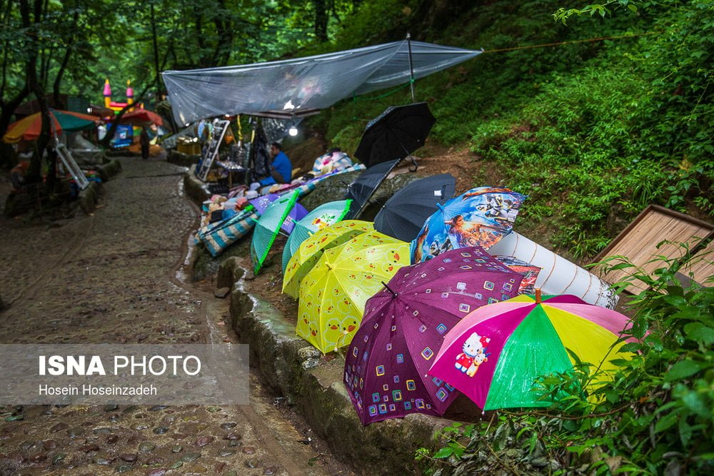 https://ifpnews.com/wp-content/uploads/2018/08/Rudkhan-Forest-13.jpg