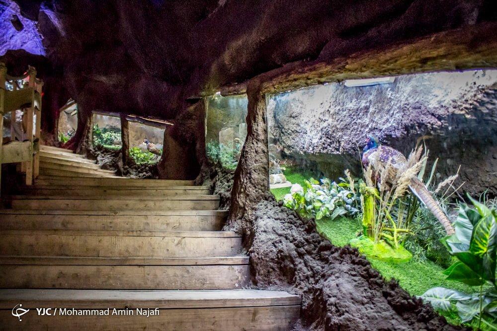 https://ifpnews.com/wp-content/uploads/2018/09/hamedan-aquarium-1.jpg