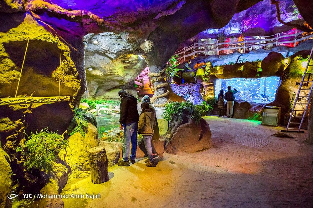 https://ifpnews.com/wp-content/uploads/2018/09/hamedan-aquarium-14.jpg