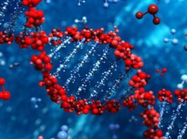 Effective DNA Extraction Method Helps Minimize Lab Costs