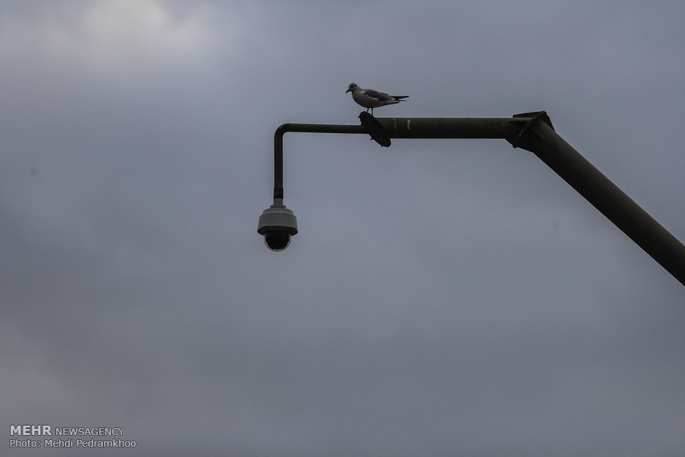 https://ifpnews.com/wp-content/uploads/2018/12/Iran%E2%80%99s-Karoon-River-Hosting-Migratory-Birds-4.jpg
