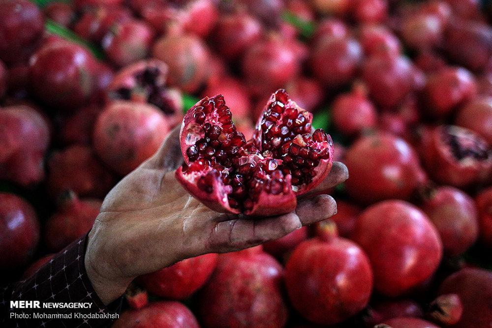 https://ifpnews.com/wp-content/uploads/2018/12/Tehran-Hosting-Organic-Food-Fair-ahead-of-Yalda-Night-11.jpg