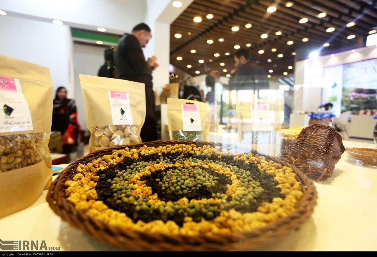 https://ifpnews.com/wp-content/uploads/2018/12/Tehran-Hosting-Organic-Food-Fair-ahead-of-Yalda-Night-18.jpg