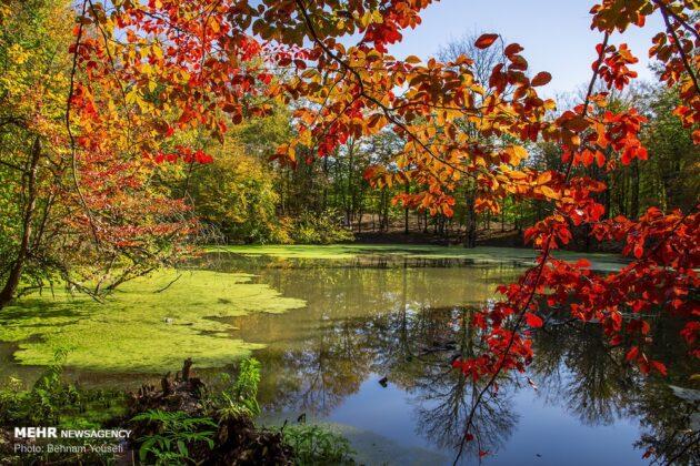 Autumn in Mazandaran, Iran