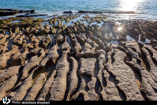 Beauty of Persian Gulf More Tangible at Parsian Coast