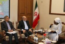 African Union Ready to Boost Sci-Tech Ties with Iran