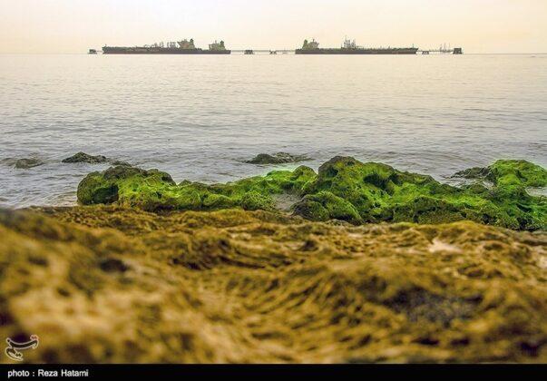 Kharg Island, Iran