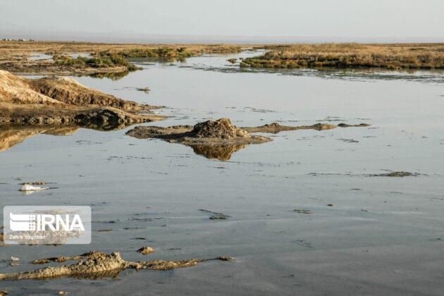Gavkhouni Wetland