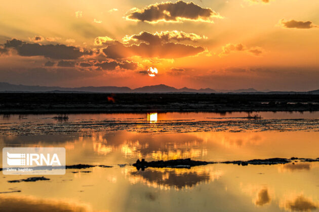 Gavkhouni Wetland (9)