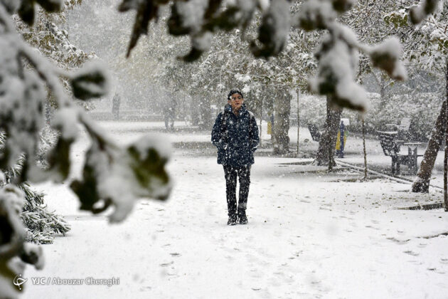 Tehran Citizens Surprised by First Autumn Snowfall