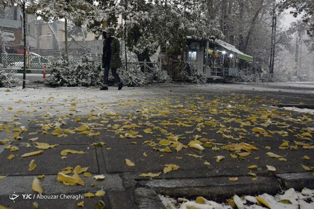 Snow in Tehran