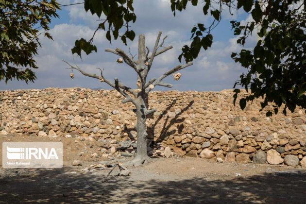 Stone Garden of Kerman