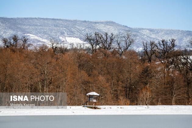 Mazandaran in Winter
