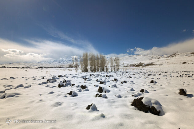 Iran's Beauties in Winter: Frozen Wetland of Choghakhor