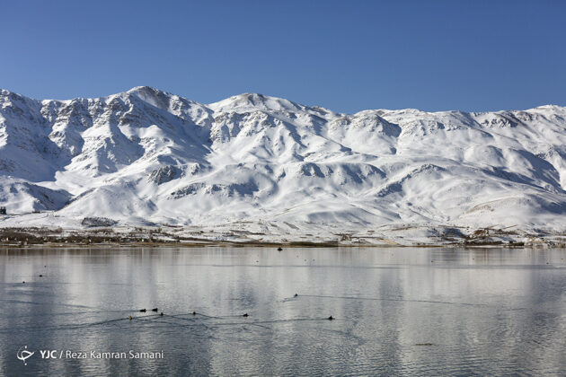 Frozen Wetland of Choghakhor, Iran
