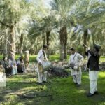 Folklore Musicians from Kerman Province, Iran