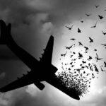 Musicals Performed to Commemorate Ukrainian Flight 752 Passengers
