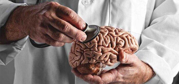 Researchers Using Natural Killer Cells to Treat Brain Tumors