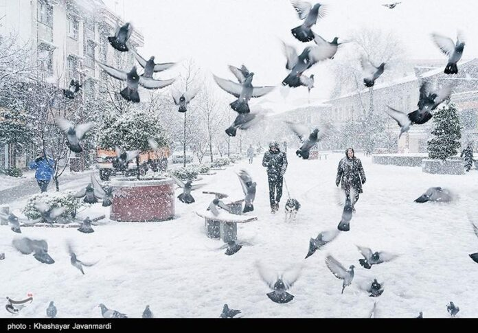 Snowfall in Rasht, north of Iran