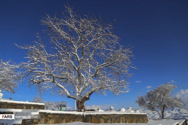 Snowy Winter in Sanandaj, Iran