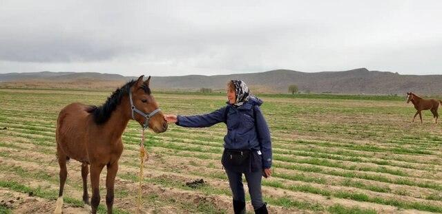 German Doctor Visits Iran to Travel Ancient Route on Horseback 2