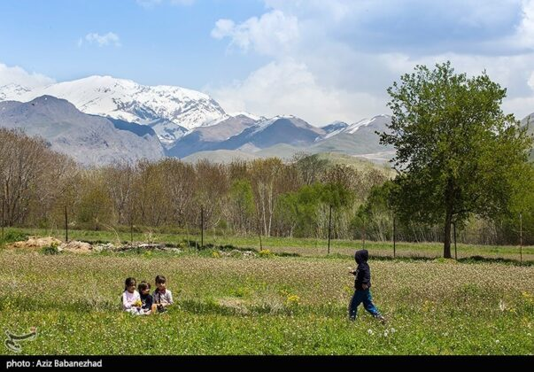 Wonderful Nature of southwestern Iran 5