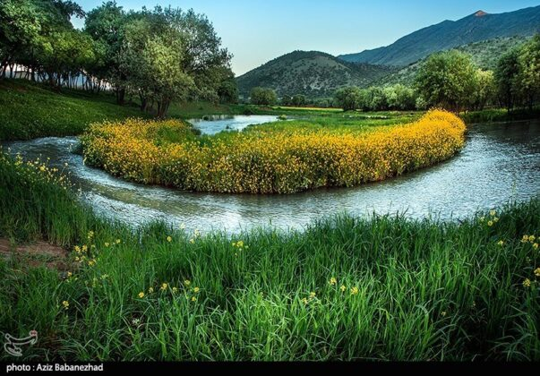 Spring in Hanam, Lorestan 16