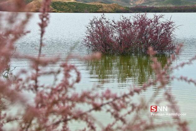Full Dams in Iran After Rainfalls