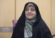 Domestic Violence in Iran Less Than That in Other Countries: VP