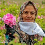 Iranian farmer woman