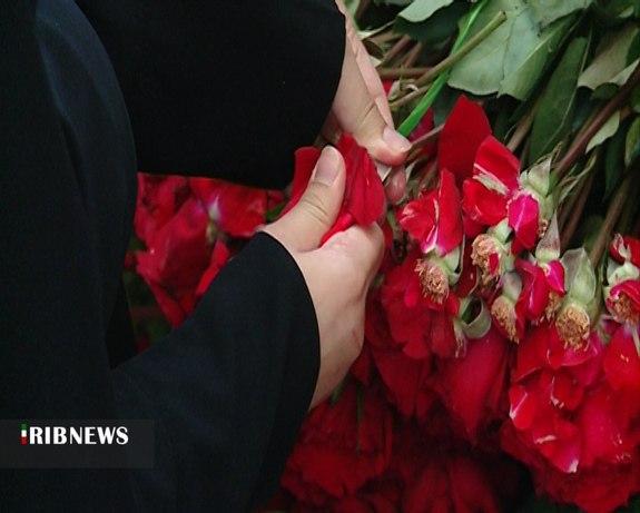Senhora iraniana divorciada recebe 1 milhão de rosas como parte do casamento 4